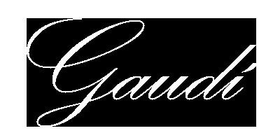 peluqueriagaudi.com